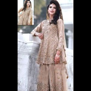 Pakistani women embroidered net embroidered dress